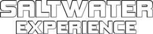 Saltwater experience logo testimonial